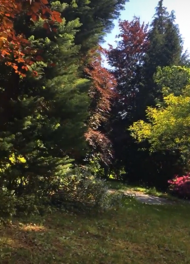 Local gardens - ideas and plans definitely involve getting outside more