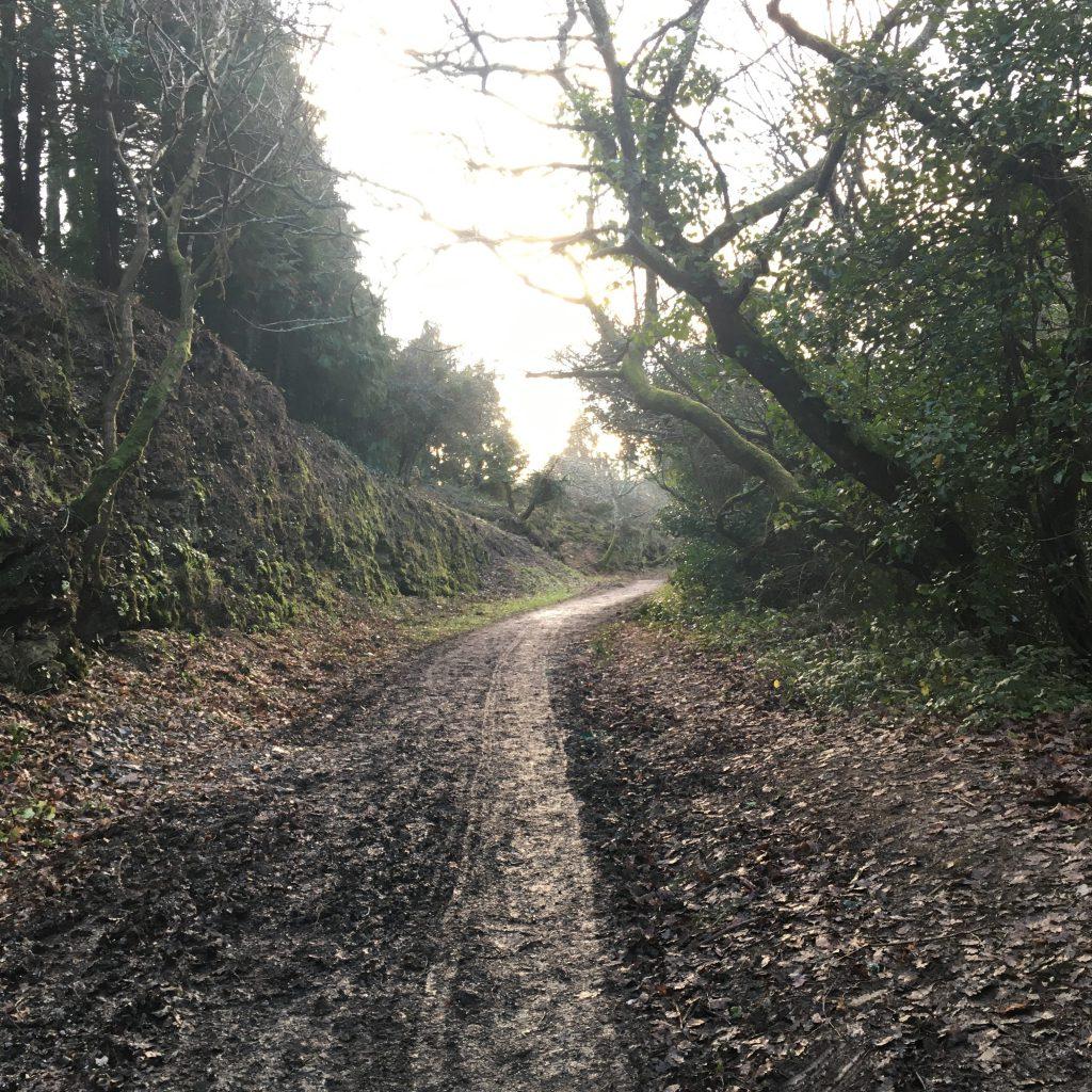 Old Newham Railway Walk
